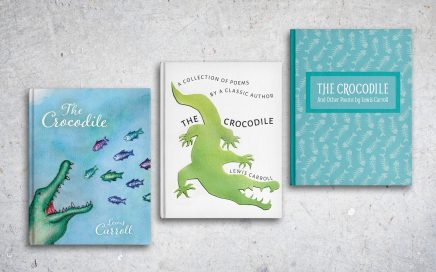 The Crocodile Book Covers